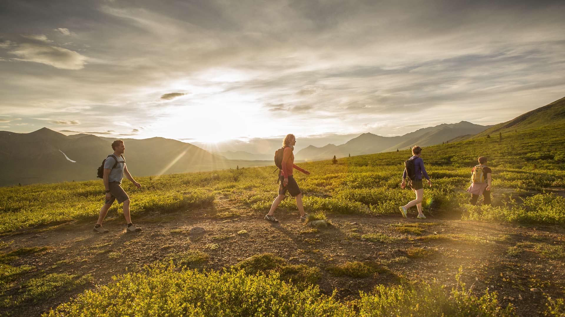 Things To Do In The Yukon Travel Yukon Yukon Canada