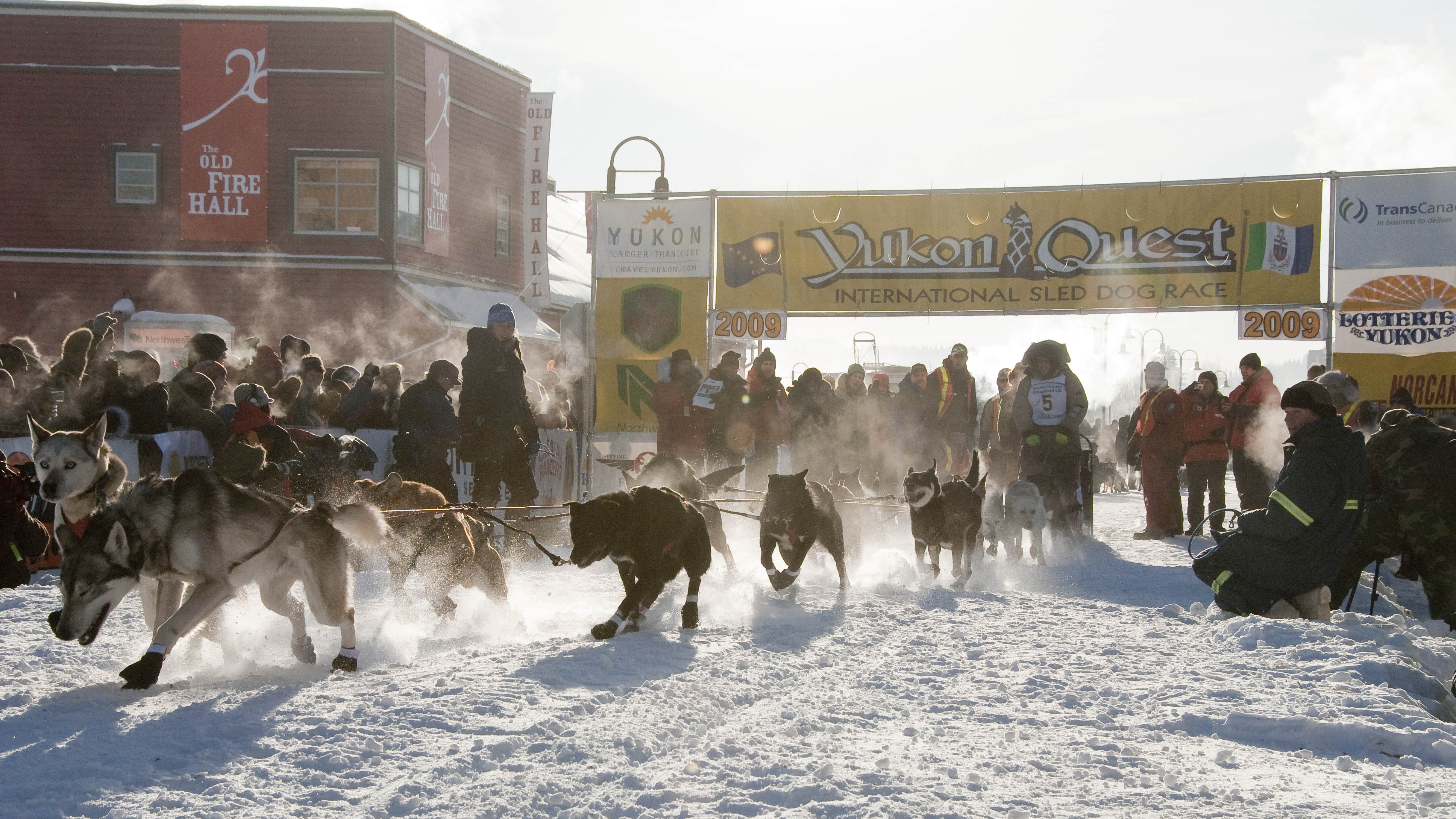 Festivals & Events In Whitehorse